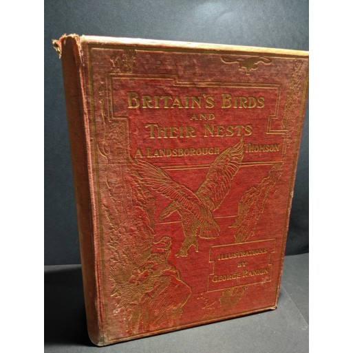 Britain's Birds and their Nests Book by Thomson, A Landsborough